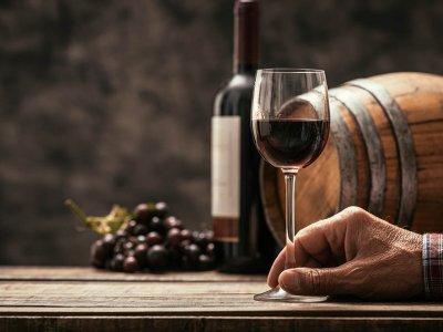 Op wijnvakantie tussen Duitse, Franse en Spaanse wijngaarden